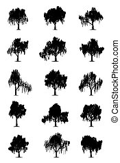 Weeping willows - Weeping willow trees silhouettes isolated...