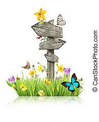 wegweiser, in, wiese, mit, vlinders, begriff, von, fruehjahr