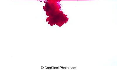 weiß rot, hintergrund, tinte