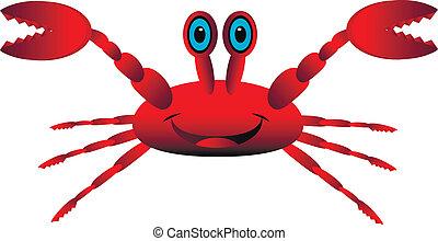 weiß rot, krabbe