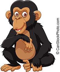weißer hintergrund, freigestellt, schimpanse, karikatur