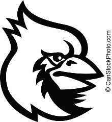 weißer vogel, maskottchen, schwarz, kardinal, kopf