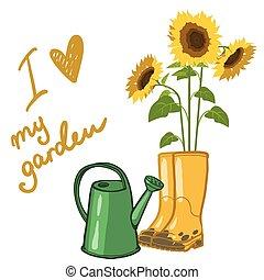 weißes, buechse, aus, bewässerung, sonnenblumen, abbildung, ...