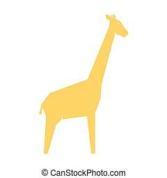 weißes, giraffe, orange, freigestellt