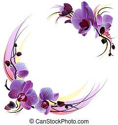 weißes, grüßen karte, mit, violett, orchideen