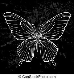 weißes, grafik, schwarz, butterfly.