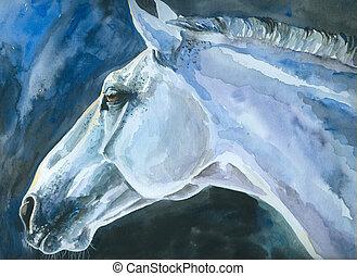 weißes, horse.