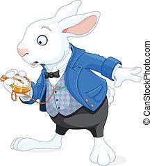 weißes kaninchen, mit, taschenuhr