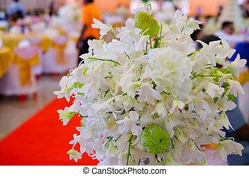 weißes, orchidee, blumen, dekorativ, für, wedding.