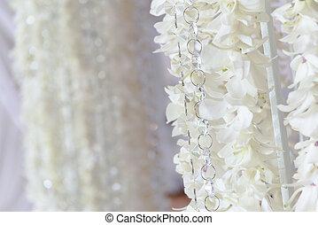 weißes, orchidee, blumen