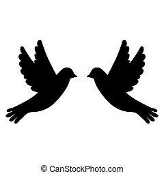 weißes, silhouette, vögel, hintergrund