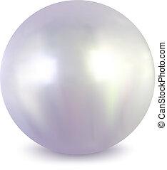 weißes, vektor, pearl.