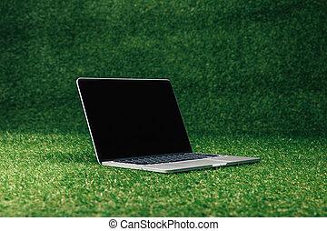 wei, draagbare computer, op, groene, leeg, afsluiten, scherm, aanzicht