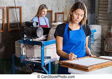 weibliche , arbeiter, papier, sauber, gebrauchend, pinzette