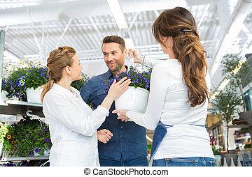 weibliche , blumenhändler, assistieren, paar, in, kaufen, purpurrote blume, pflanze