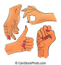 weibliche frau, hand, vektor, hände, satz, sammlung, gestures.