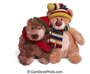 weich, teddybär, paar