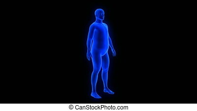 Weight loss body transformation - man theme. Blue Human Anatomy Body 3D Scan render on black background