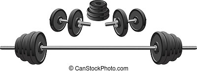 Weights - Illustration of weights including two dumbbells...
