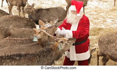 weihnachten, behandeln
