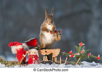 stockbild von squirrel weihnachten sein kr ckstock. Black Bedroom Furniture Sets. Home Design Ideas