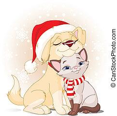 weihnachten, friends