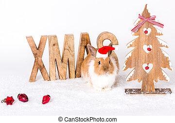 weihnachten, grüße