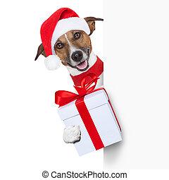 weihnachten, hund, hallo, verabschiedung