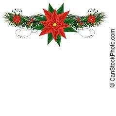 weihnachten, rahmen, mit, pointsettia