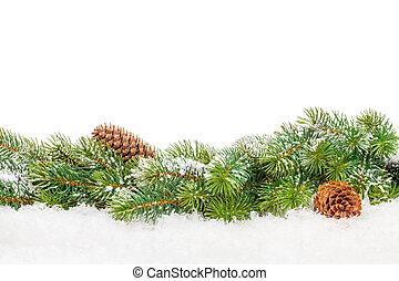 weihnachten, tanne, mit, schnee
