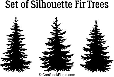 weihnachtsbäume, silhouetten, tanne