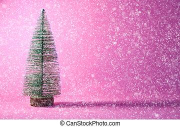 Gutschein Weihnachtsbaum.Rosa Gutschein Baum Schnee Gutschein Weihnachten Gutschein