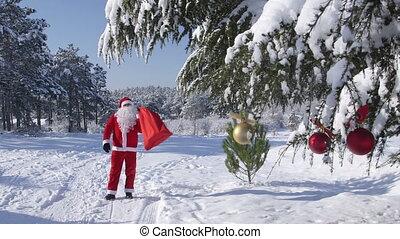 weihnachtsmann, in, der, winter, wald