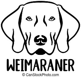 Weimaraner head with name