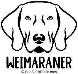 Weimaraner head with name