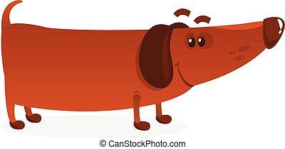weiner, vecteur, dog., illustration, rigolote, dessin animé
