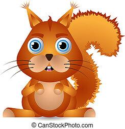 weinig; niet zo(veel), squirrel