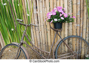 weinlese, altes , blumen, fahrrad