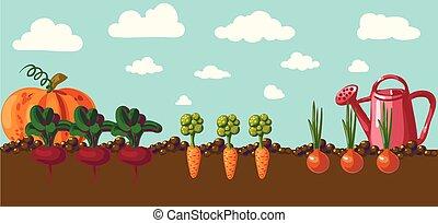 weinlese, banner, kleingarten, wurzel, veggies