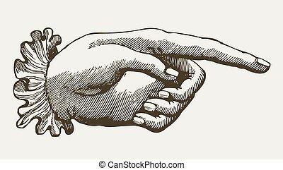 weinlese, dame, hand