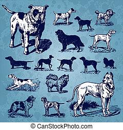 weinlese, satz, hunden, (vector)