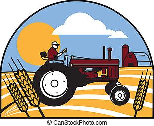 weizen, traktor