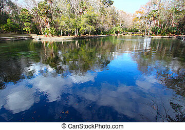 Wekiwa Springs in Florida - Clouds reflect off the waters of...