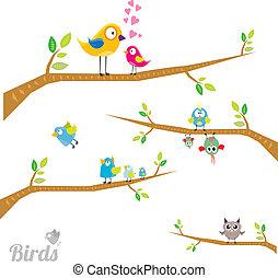 wektor, śliczny, ptaszki, na, gałąź