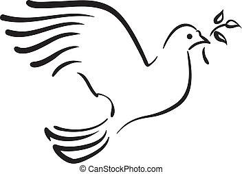 wektor, biała gołębica, z, gałąź