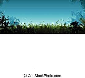wektor, dżungla, krajobraz