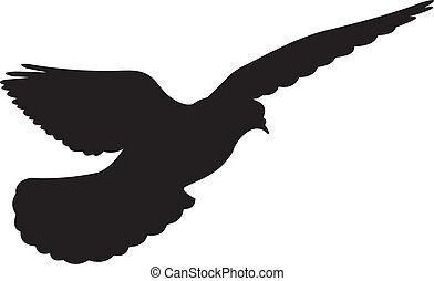 wektor, gołębica