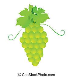wektor, grona, winogrona