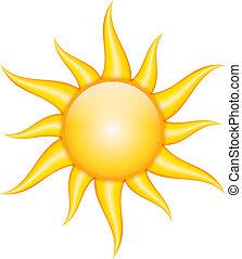 wektor, ilustracja, od, słońce