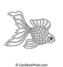 wektor, ilustracja, od, złoty, fish., lina sztuka, projektować